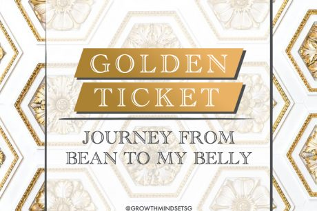 Golden Ticket: Journey from Bean to My Belly